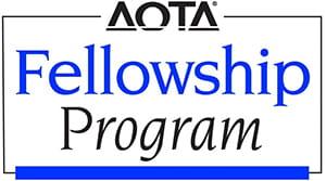 Houston Methodist Hand Therapy Fellowship