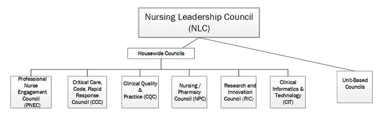 clearlake-nursing-leadership-council