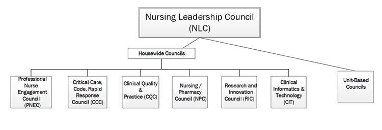 clearlake-nursing-leadership-council