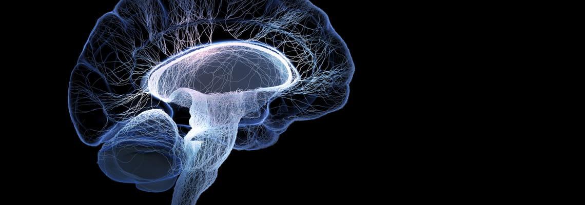 Houston Methodist Specialty Physician Group — Neurosurgery