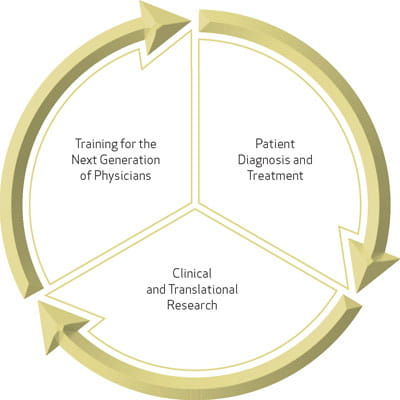 Image of Circle of Research