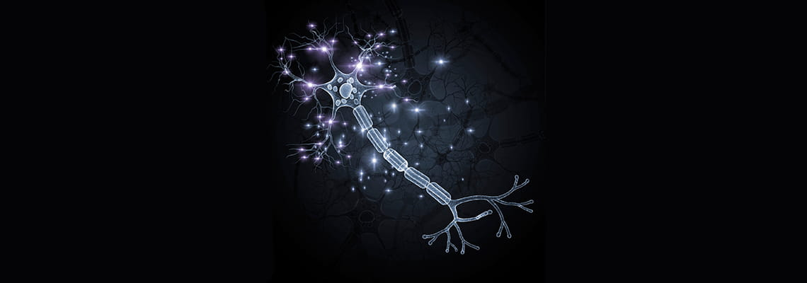 Astrocytes | Center for Neuroregeneration | Houston Methodist