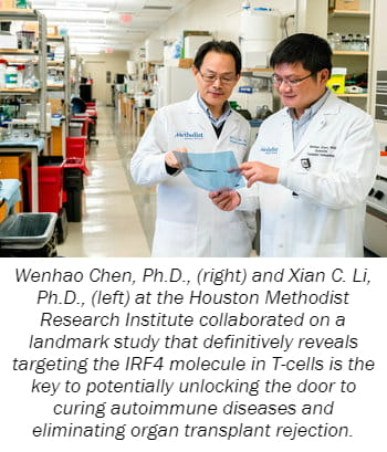 Wenhao Chen, Ph.D., (right) and Xian C. Li, Ph.D., (left) at the Houston Methodist Research Institute collaborated on a landmark study that definitively reveals targeting the IRF4 molecule in T-cells is the key to potentially unlocking the door to curing autoimmune diseases and eliminating organ transplant rejection.