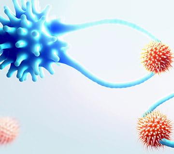Cytotoxic T cells capturing cancer cells, illustration