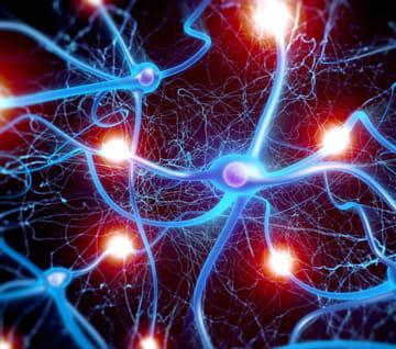 Neurosciences